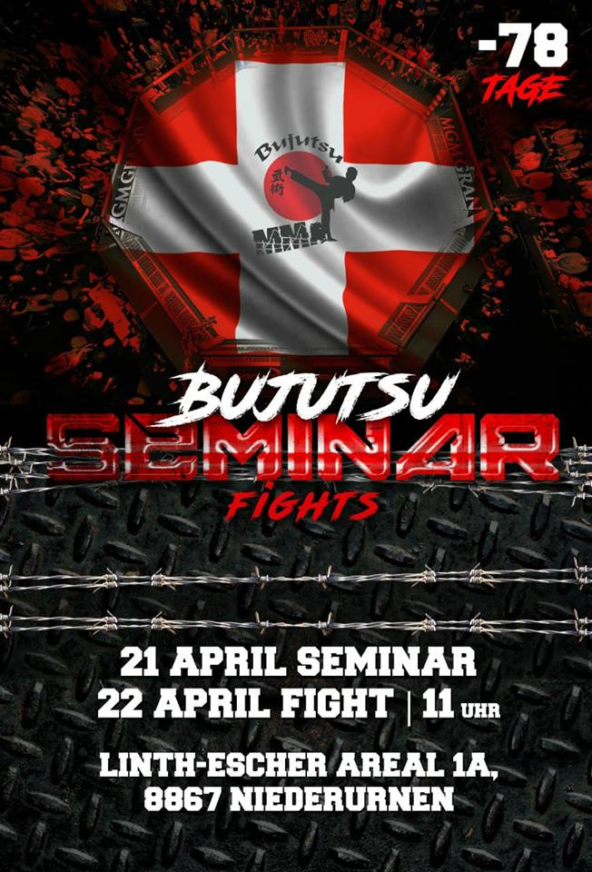 Bujutsu Seminar and Fights 2018